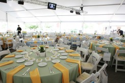 White, Yellow and Green Table Setting
